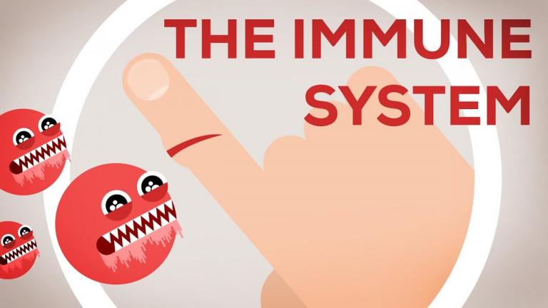 Защо си още жив – Имунната система обяснена (Имунна система, част 1/3)