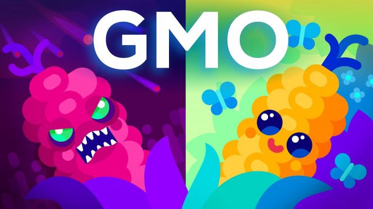 Генното инженерство и храната ни, ГМО лошо ли е за здравето ни?