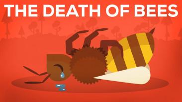 Измирането на Пчелите – Паразити, Отрови и Хора