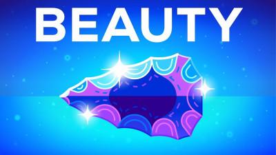 Защо красивите неща ни радват – Красотата
